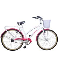 Bicicleta-WINNER-Arequita