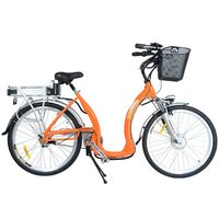 Bicicleta-electrica-Flash-SAKURA