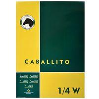 Block-dibujo-1-4W-CABALLITO-10-hojas-100-g