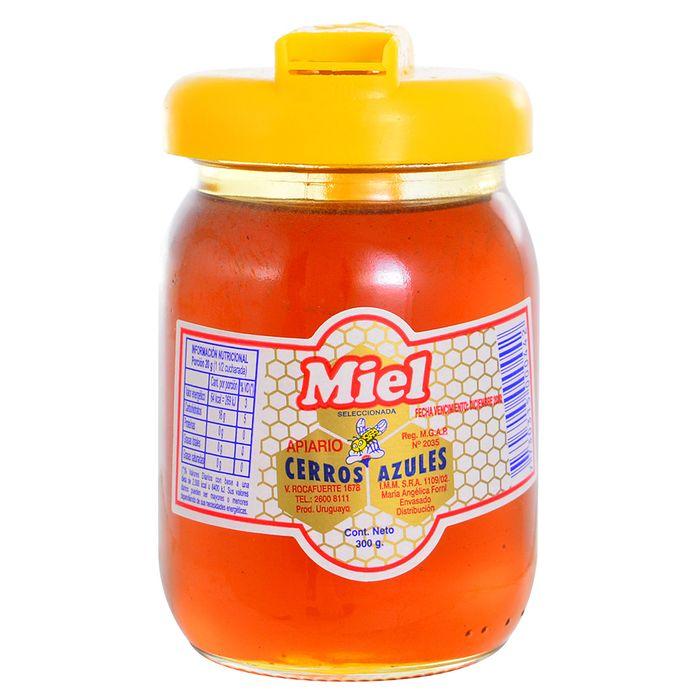 Miel-CERROS-AZULES--fco.-300-g-con-Vertedor