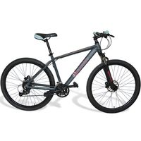 Bicicleta-WYNANTS-Mod.-Hypan-pro-rodado-275-27-velocidades-grey