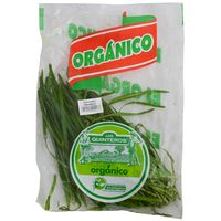Ajo-chino-organico