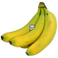 Banana-ecuador