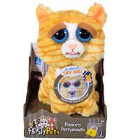 Feisty-pets-cat