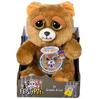 Feisty-pets-bear