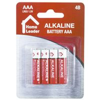 Pilas-alcalinas-Home-leader-AAA-x4
