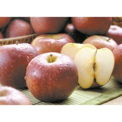 Manzana-royal-gala-especial