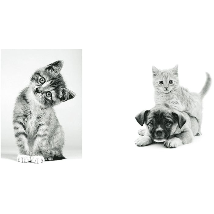 Lamina-30x40-cm-x-2-animales