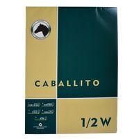 Block-dibujo-1-2w-CABALLITO-10-hojas-100g