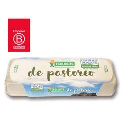 Huevo-Ecologito-de-pastoreo-12-un.