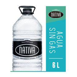 Agua-NATIVA-sin-gas-6-L