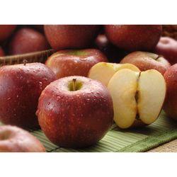 Manzana-red-en-malla-premium