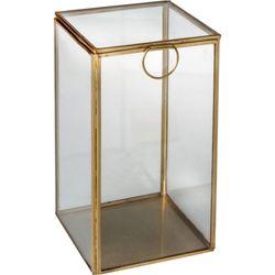 Caja-deco-de-vidrio-y-metal-20x11x11-cm