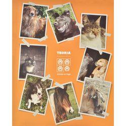 Cuadernola-tapa-dura-100-hojas-animales-sin-hogar