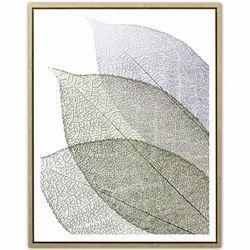 Lamina-c-marco-40x50cm-hojas-----------