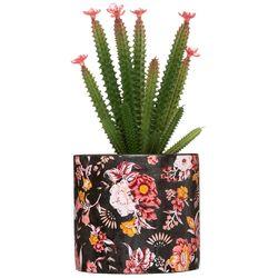 Cactus-artificial-gypsy
