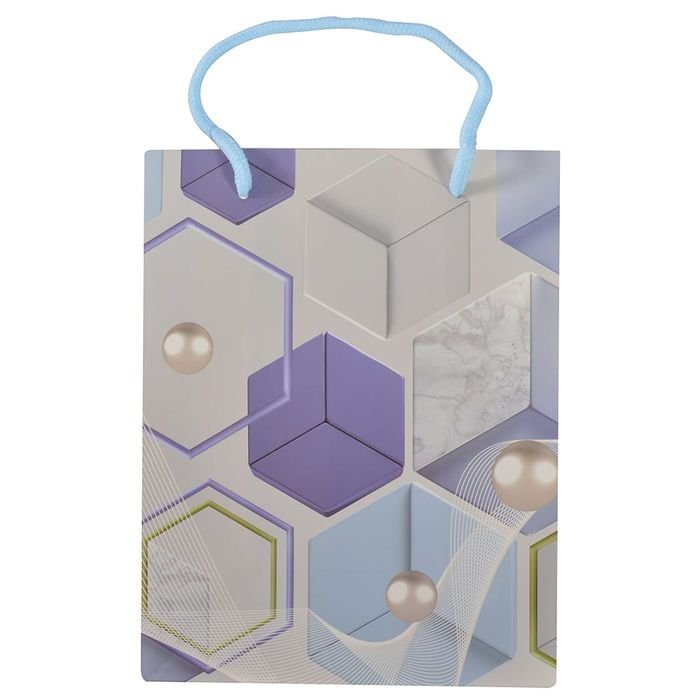 Bolsa-de-regalo-estampada-23x18x10