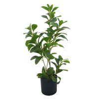 Planta-artificial-63cm-verde