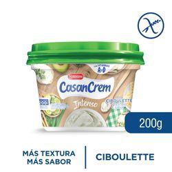 Queso-crema-sabor-intenso-ciboulette-CASANCREM-200-g